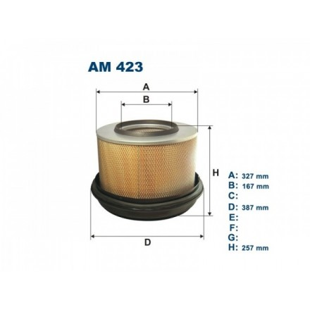 FILTRON Oro filtras AM423